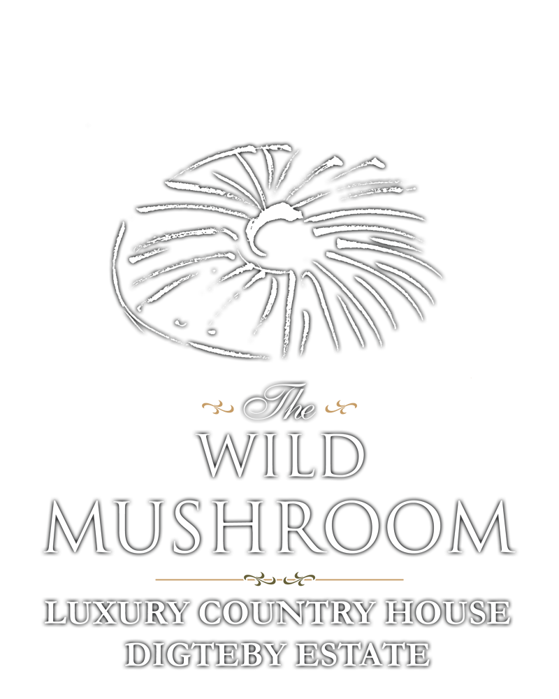The Wild Mushroom Country House Accommodation Stellenbosch